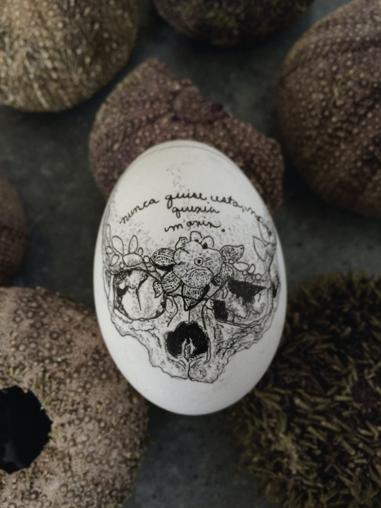 An egg with a detailed black-and-white illustration of a skull wearing a flower crown drawn on its surface. The skull has Spanish cursive across its forehead.